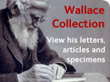 NHM Wallace Family Archive